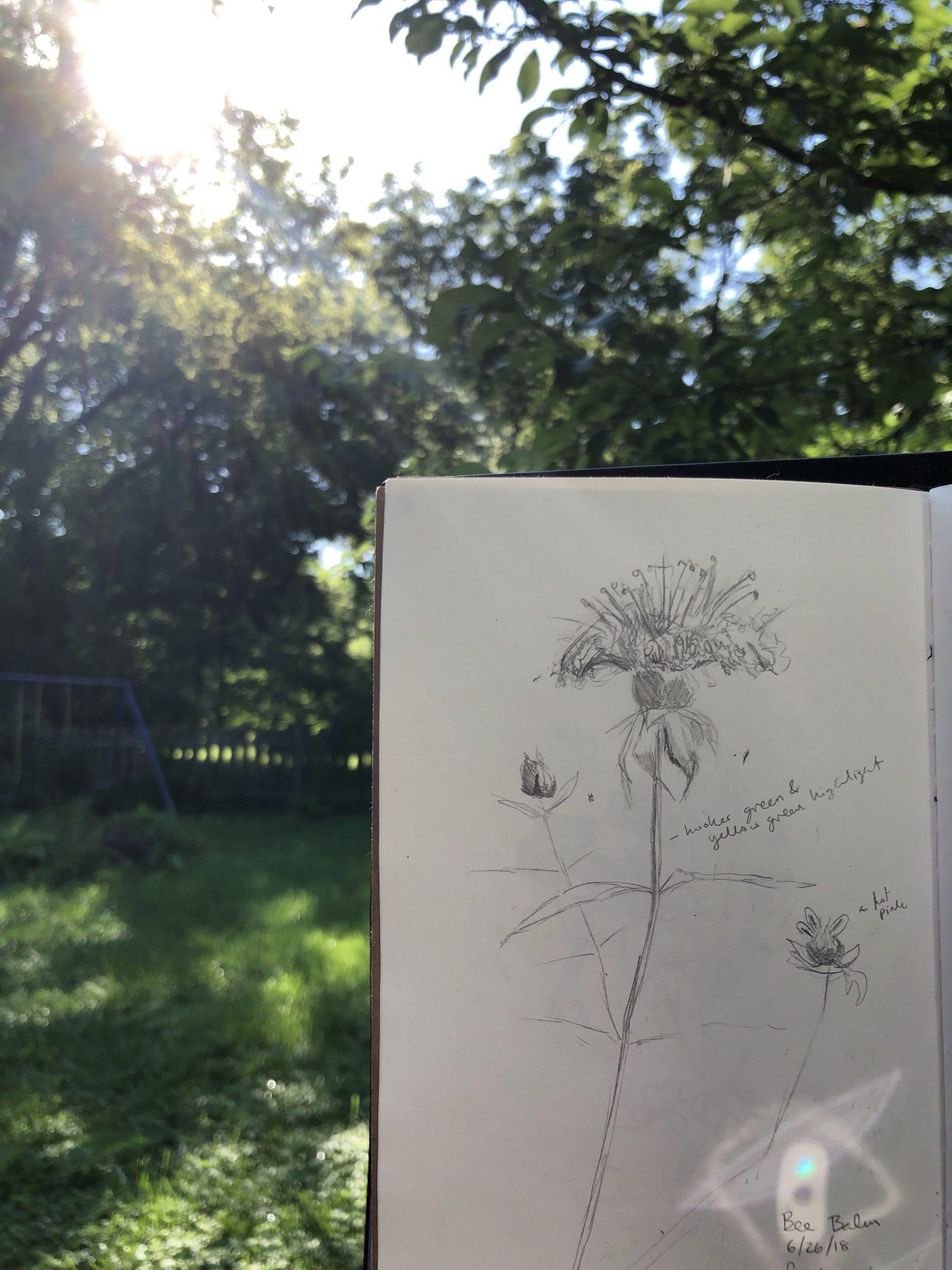 Morning Sketch Book
